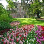 Il-Castello-in-primavera-5