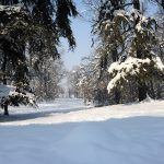 Il-parco-in-inverno-2