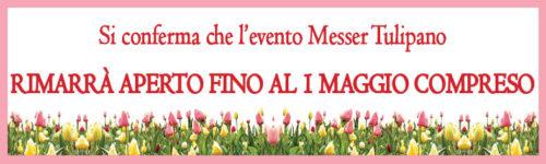 banner1maggio