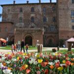 CASTELLO DI PRALORMO_Messer Tulipano 0g