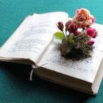 MT2018_Biblio-rose_Rosa Variegata di Bologna piantata in un antico libro