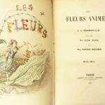 MT2019_CacciatoriDiPiante_09_J.J.-Grandville_Les-fleurs-animées_1847_illustrazione-te-e-Caffè